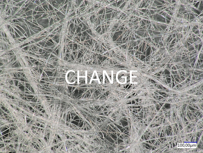 Change: We anticipate, initiate and appreciate change and use the high driving force of continuous change to innovate