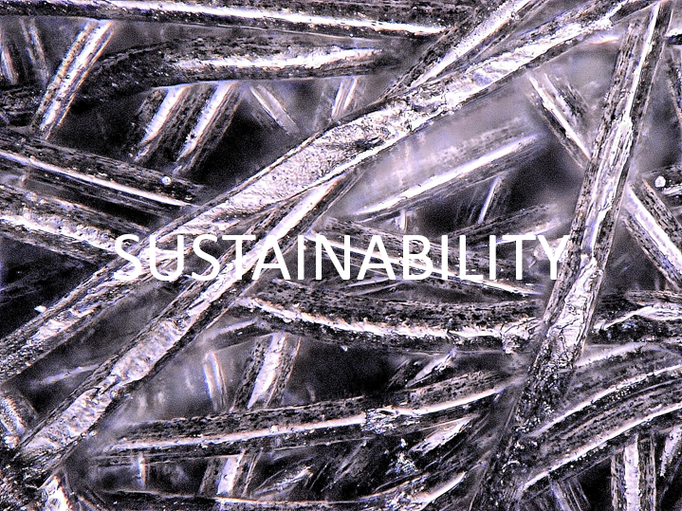 Sustainability: We create sustainable value for our customers, the company and society on the basis of continuous innovation and good decision-making authority