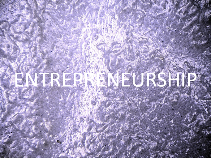 Entrepreneurship: We act entrepreneurially by taking initiative and responsibility, using critical and economic judgement