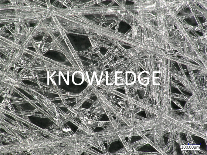 Knowledge: We proactively seek, use and share available knowledge and information