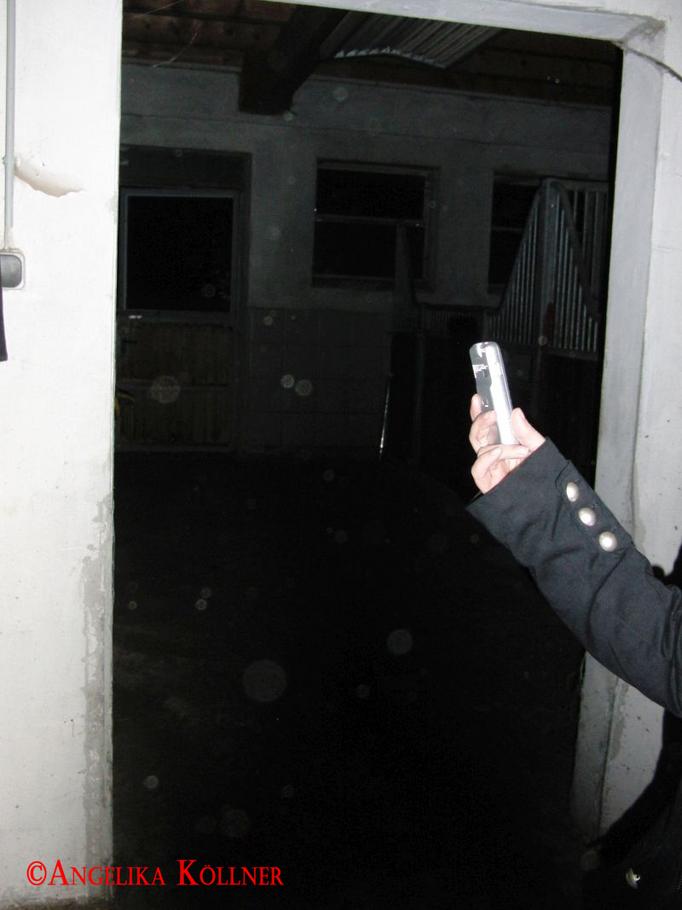 4. Eindrücke der ESP-Sitzung im Stall. Wieder mit vielen Stauborbs. #Ghosthunters #paranormal #Spuk