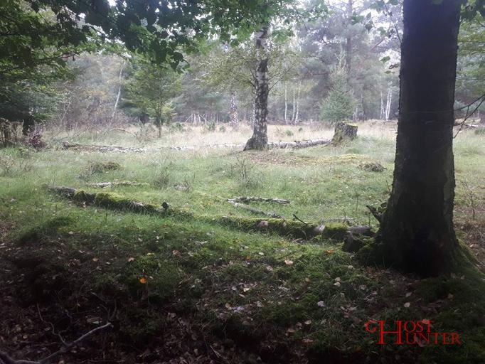 Während rundherum relativ dicht die Bäume stehen, befindet sich hier eine Lichtung. #ghosthunters #ghosts #paranormal #geister