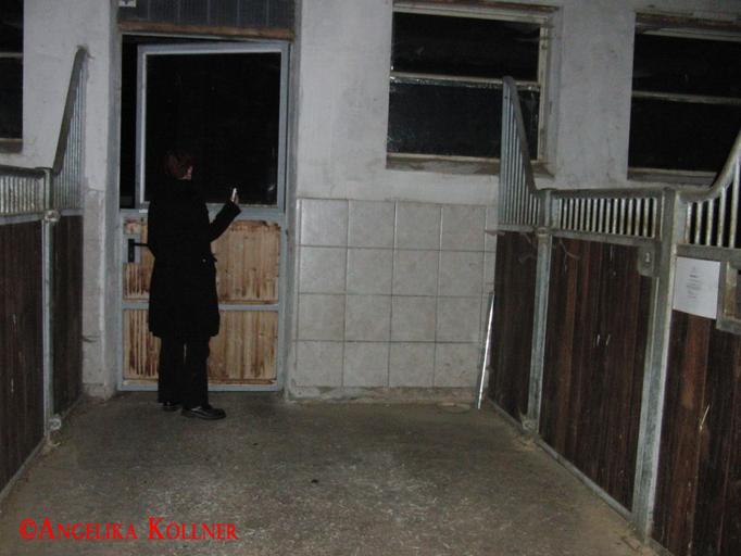 6. Eindrücke der ESP-Sitzung im Stall. #Ghosthunters #paranormal #Spuk