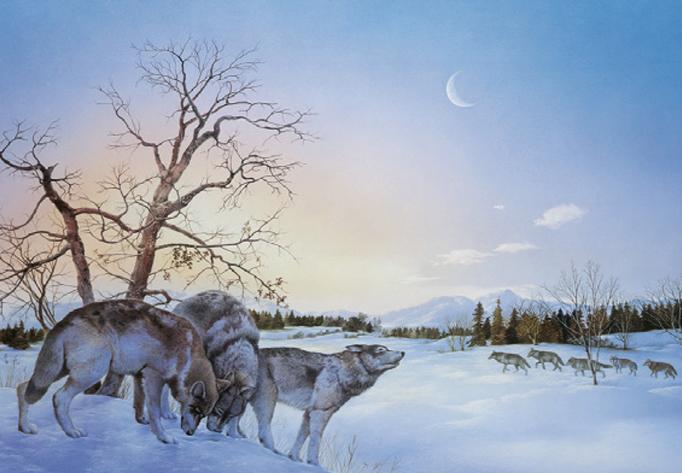 Die Wölfe - Carl-W. Röhrigs Classics