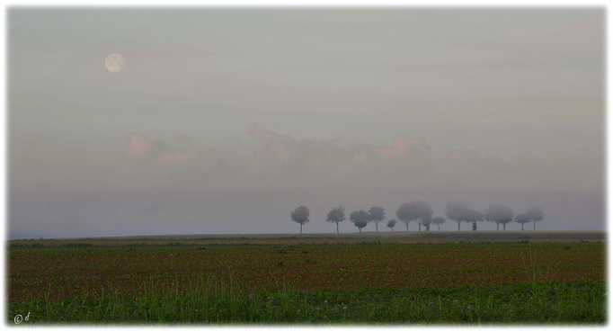 Mond - Wolken - Nebel - Land
