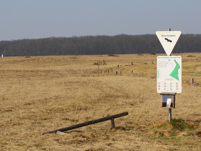 Garchinger Heide