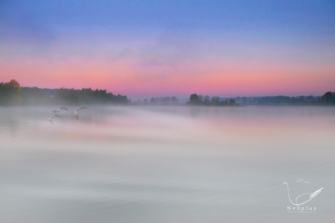 Döllnitzsee im Morgennebel