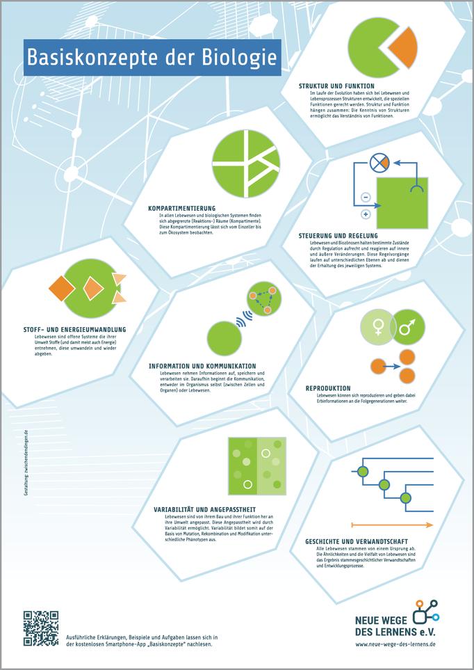 Bio-Basiskonzepte-Plakat für den Verein Neue Wege des Lernens e. V.
