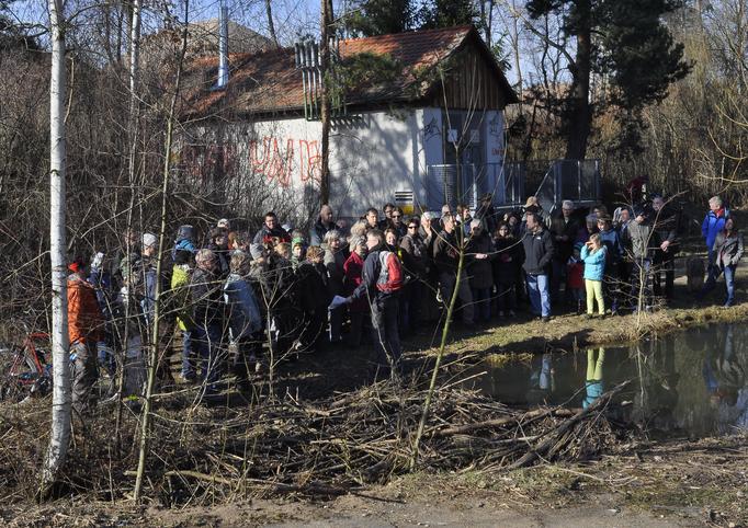 Die Gruppe am Biberdamm, der an den Tennenbach zurückstaut (Foto: Annelore Schneider)