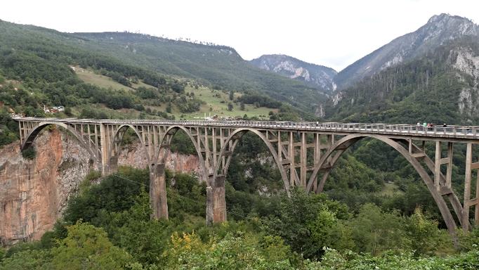 Tara/Bridge