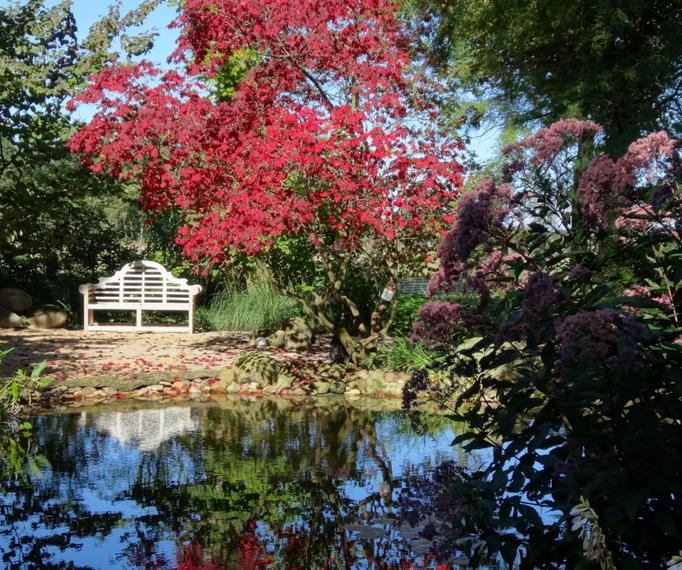 farbenfrohe Gartengestaltung im Herbst