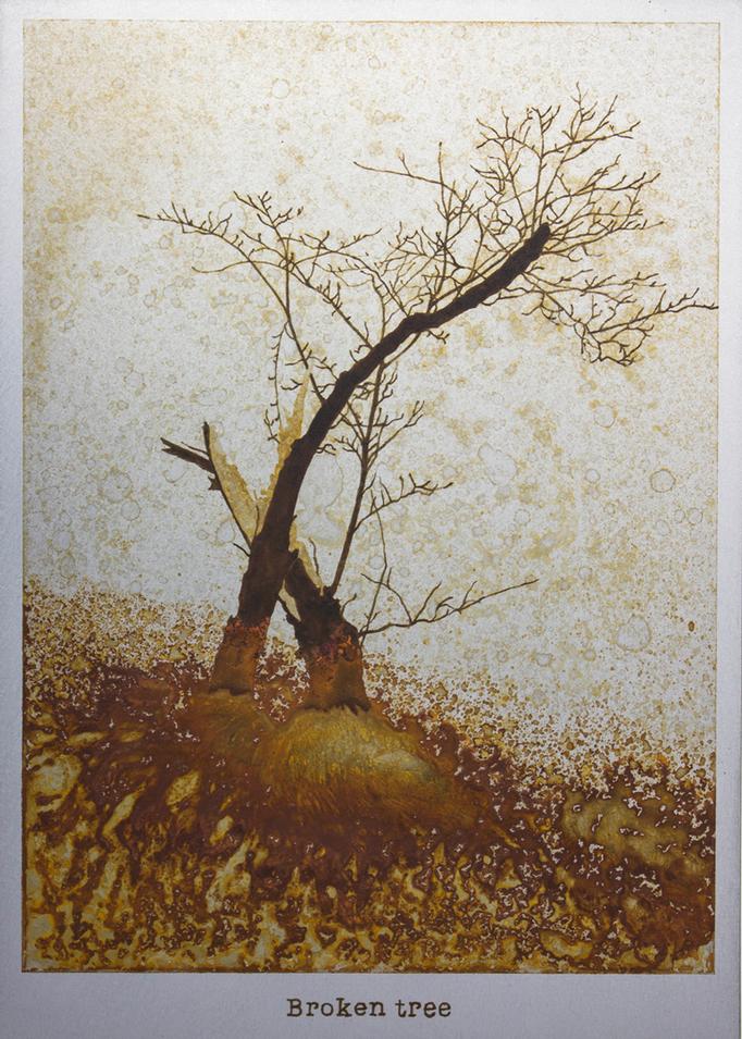 折れた木 / A Broken tree / H257×W182mm / 10.2017