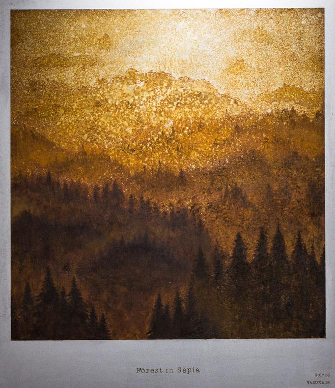 セピア色の森 / Forest in Sepia / H530×W455mm /03.2017