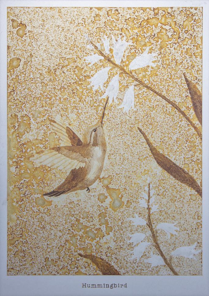 ハチドリ / Hummingbird / H257×W182mm / 07.2017