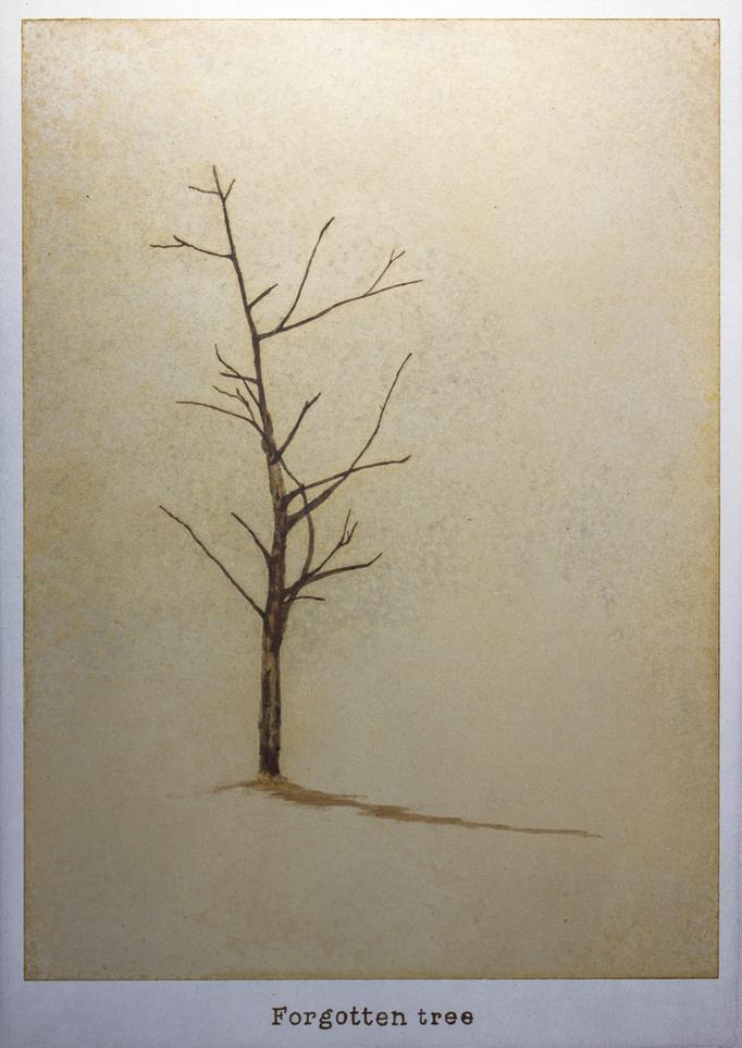 忘れられた木 / A tree in oblivion / H257×W182mm / 10.2017