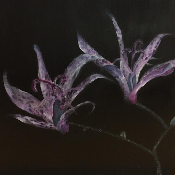 「夜の迷い」 油彩、パネルにミュー・グラウンド 53.0×53.0cm 2018