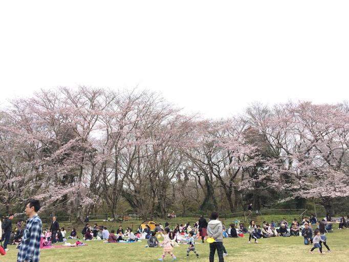 城址公園 本丸