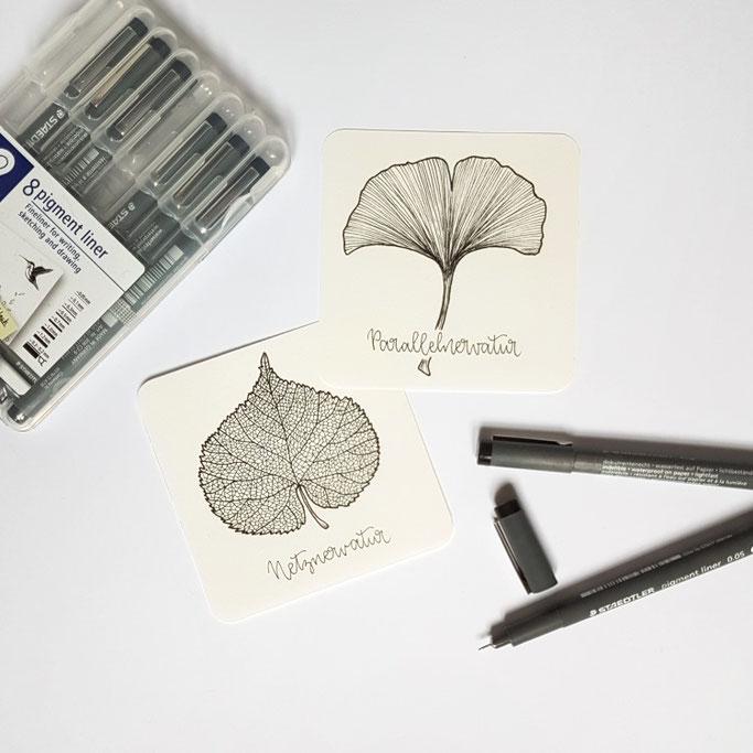 DIY Anleitung zum Skelettieren - Unterschied Blätter Netznervatur und Parallelnervatur
