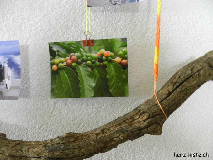 Bilderrahmen mit Fotos selbermachen - aus Ästen