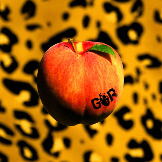 GORILLA RIOT, new album, PEACH, rockers and other animals, news, Arjun Bhishma,Blues Stoner Rock