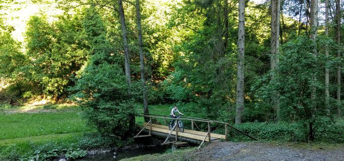 Im Ahringsbachtal gibt es soviel schöne Natur zu erkunden.