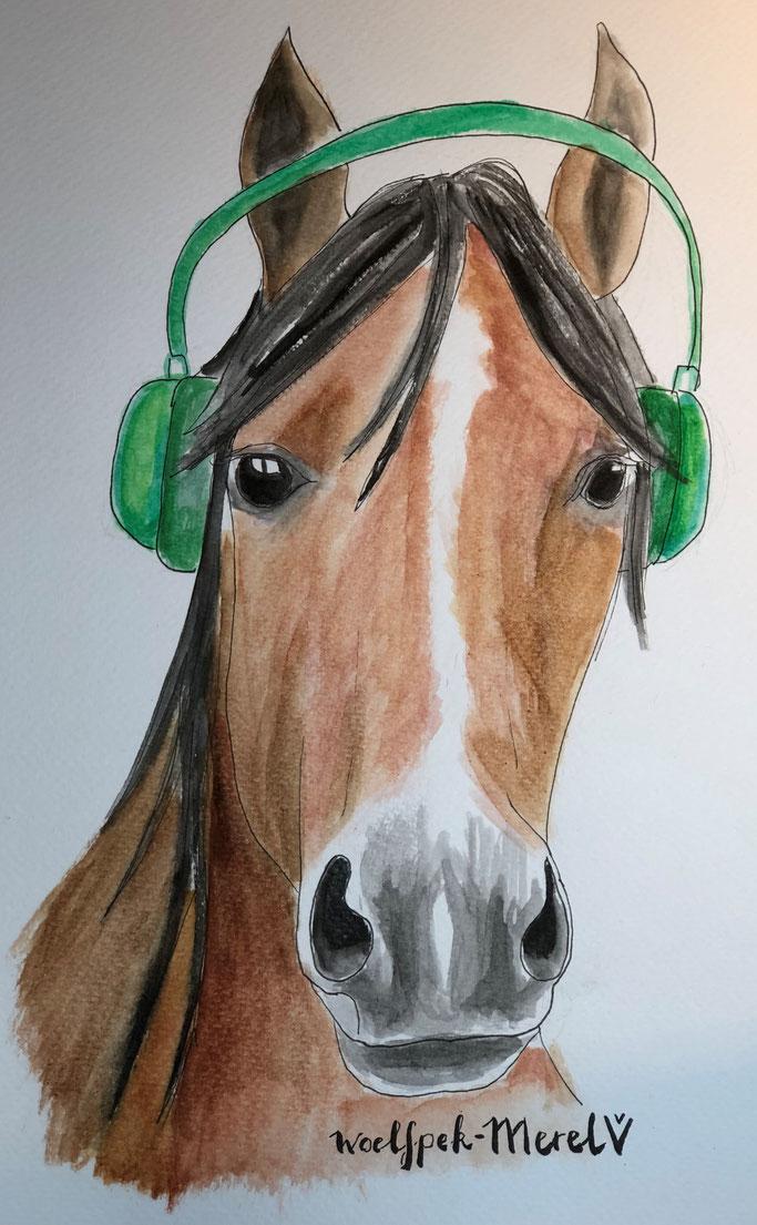 Paard met koptelefoon - Merel van Vugt - Woelfpek.nl