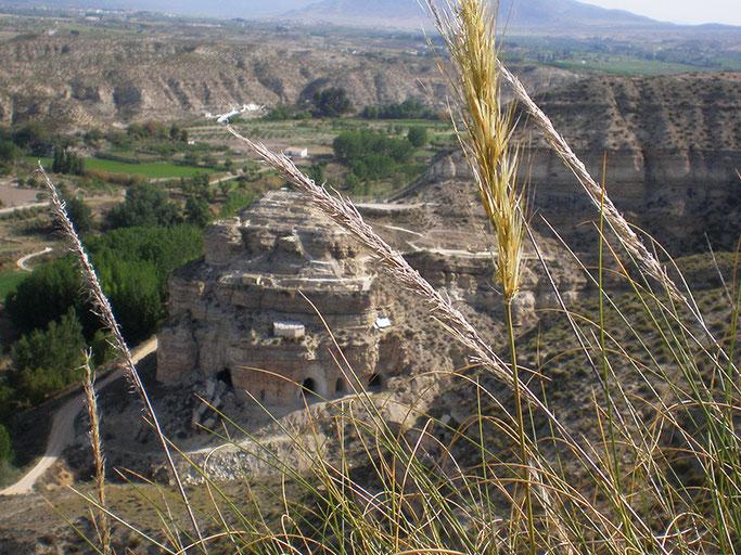 yacimiento arqueológico castellón alto galera