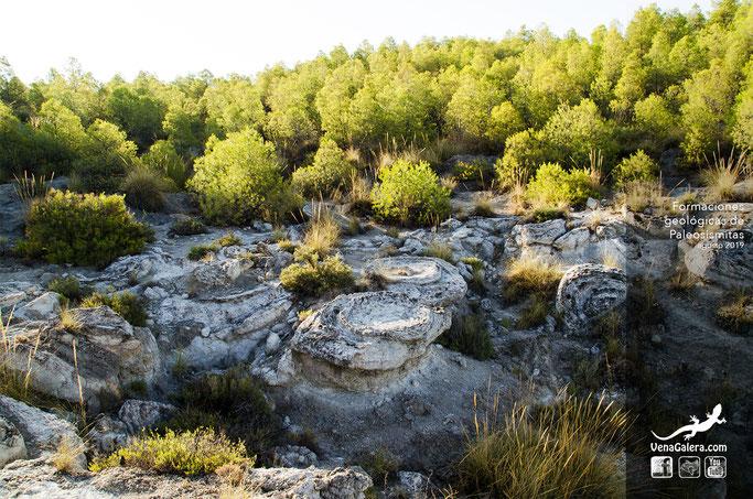 formación geologica paleosismitas en galera