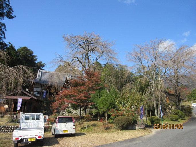 長野・南木曽の浄土真宗 長延寺さんにて、素晴らしいお天気でした。