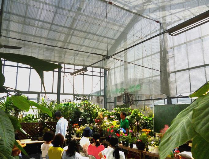見上げる大温室で花とみどりに囲まれ授業・・