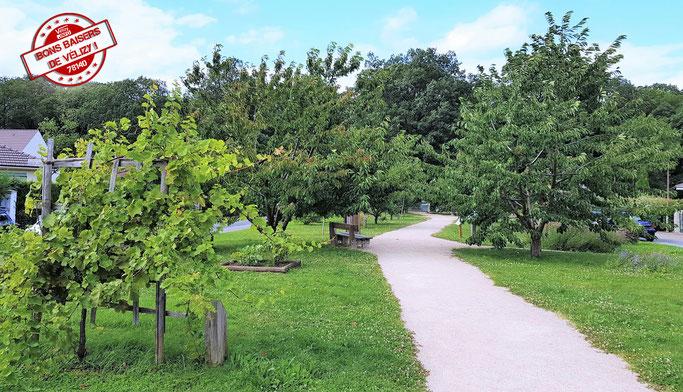 Le Jardin des Sens à Vélizy-Villacoublay.