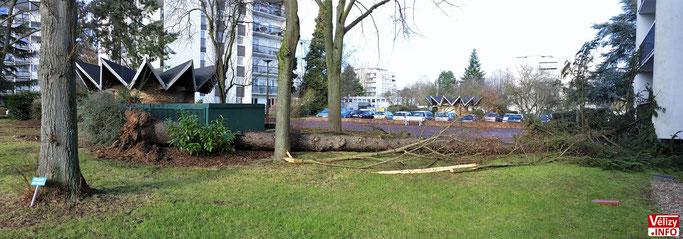 Résidence La Plaine - 36 rue du Général Exelmans - Vélizy-Villacoublay. © Vélizy Info