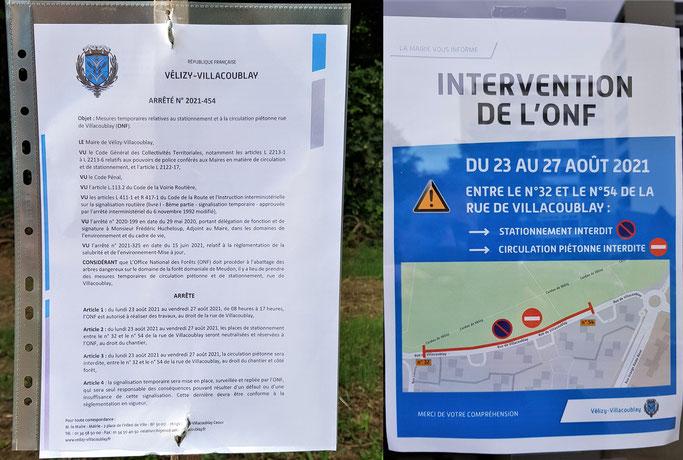 Arrêté municipal de la ville de Vélizy-Villacoublay informant de l'abattage d'arbres en forêt de Meudon.