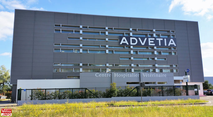 Centre Hospitalier Vétérinaire Advetia à Vélizy-Villacoublay.