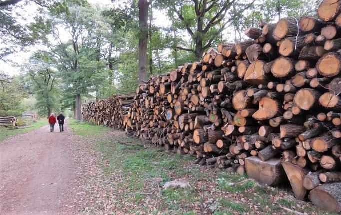 La coupe de bois massive passe mal auprès du public.
