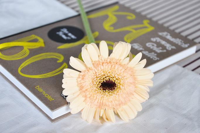 Kakebo Haushaltsbuch Finanzplanung Buchrezension Buchblog Fairy Tale Gone Realistic Blog Deutschland
