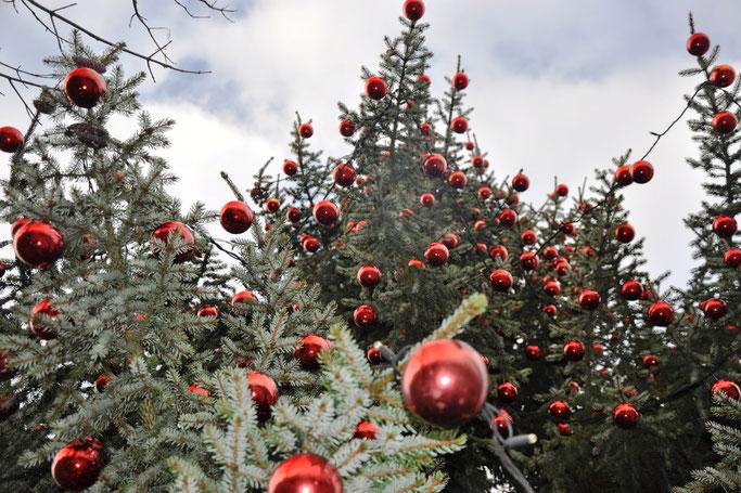 Advent: Rituale, Stress und Plätzchen Gedanken zur Weihnachtszeit Lifestyle FAIRY TALE GONE REALISTIC Modeblog Passau