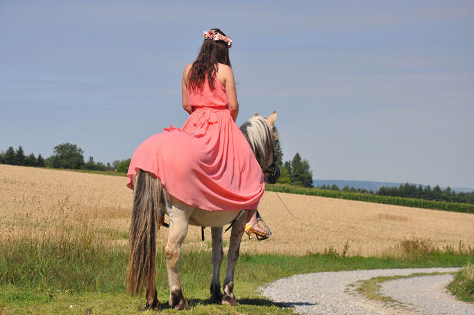 Ballkleid Outfit mit Pferd Top 10 meistgelesene Blogposts 2017 Modeblog Nähblog Fairy Tale Gone Realistic