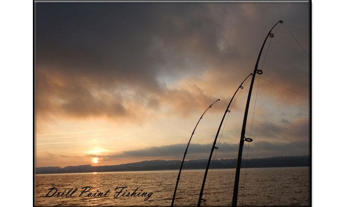Bootsruten und Schleppangelruten zum Schleppfischen