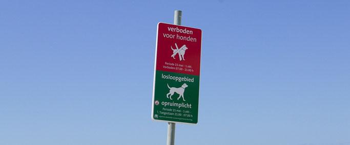 Hunde Strand Scheveningen