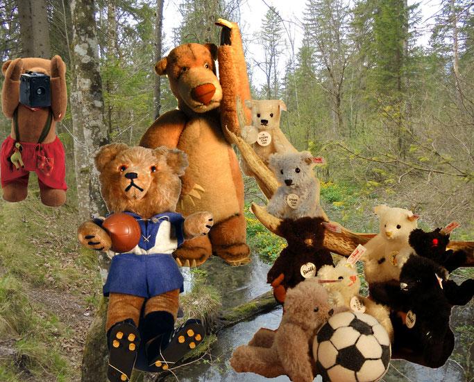 © Dr. Ursula Fellberg; Schucco Bigo Bello Fußballer, Balu von Steiff und Bruno, ein Hermann Hirschaid Bär sowie Steiff Mini- Clubbären aus der Sammlung Fellberg