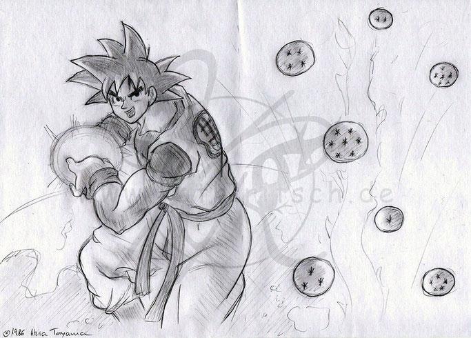 Wächter der Dragonballs