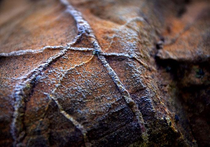 Des éclats de quartz  Naissent des traces et des lignes  Des mots mystérieux