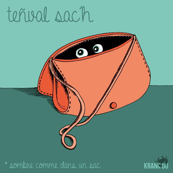 """que signifie l'expression bretonne ? Teñval sac'h """"sombre comme dans un sac""""- dessin breton illustration Bretagne bzh breizh mots citation formule figure de style symbole"""