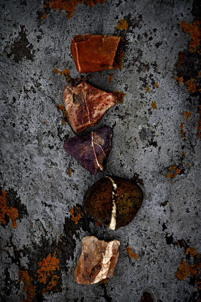 Beige, orange et rouge  Dansant sur le rocher gris  Du violet, du brun