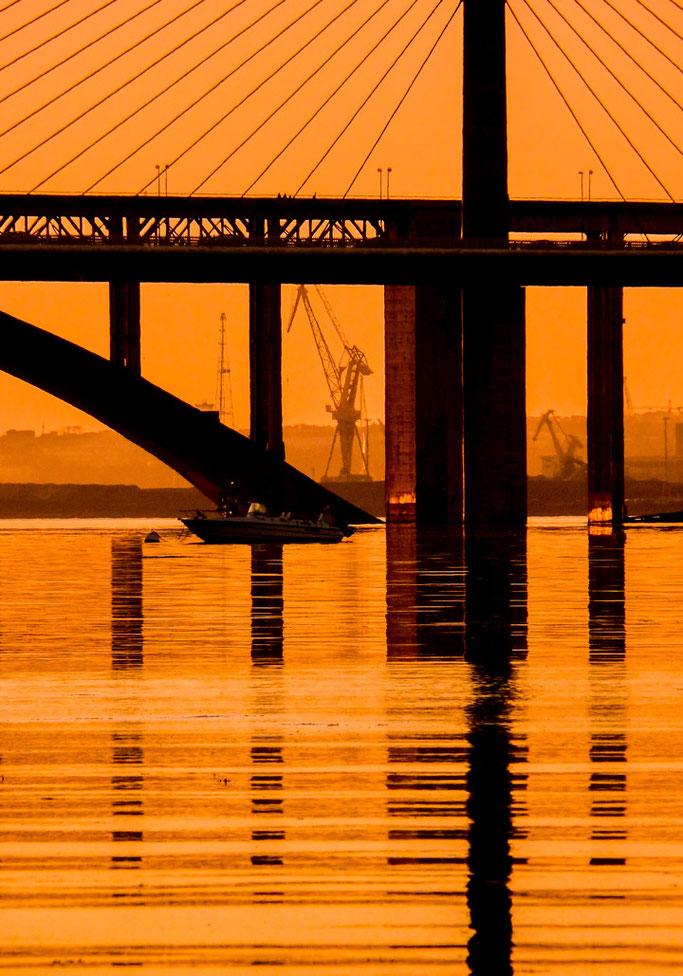 Un pont abritant  Une girafe et ses contours  L'or dans l'océan