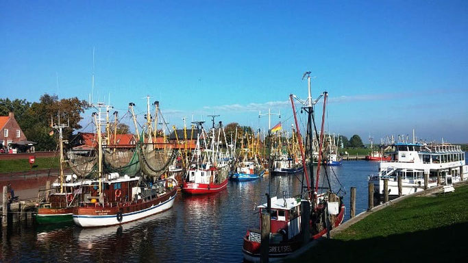 Nordsee Festland Greetsiel Krabbenkutter