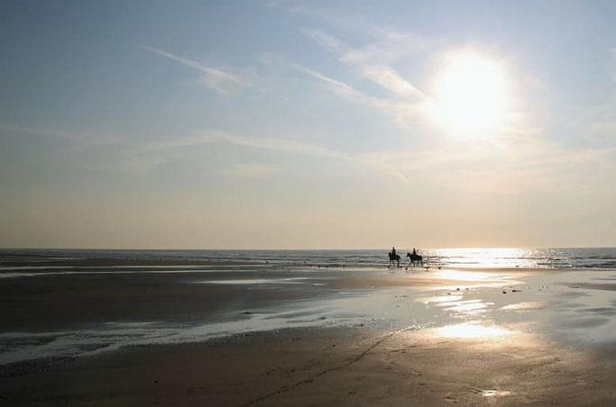 Belgien Urlaub Strand De Haan