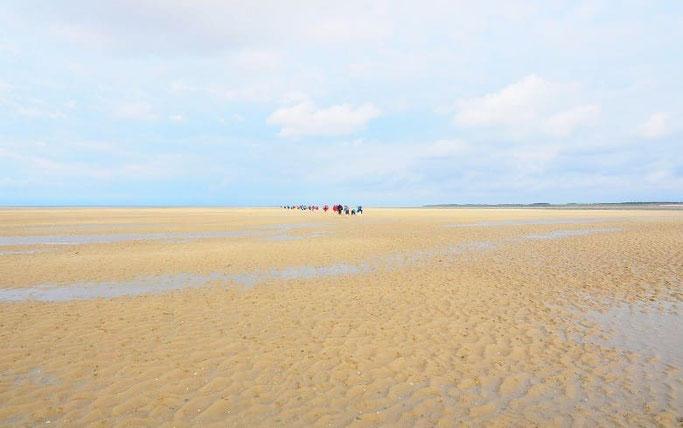 Urlaub Nordsee Amrum