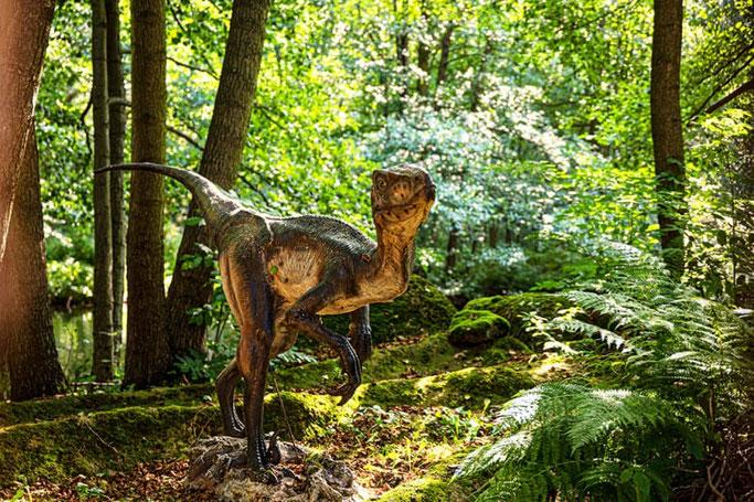 Freizeitpark Plohn Dinoland